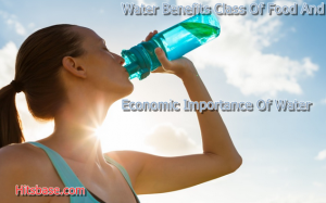 Water Benefits Class Of Food And Economic Importance Of Water